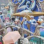 ディズニーシーの雨の日のショーの楽しみ方